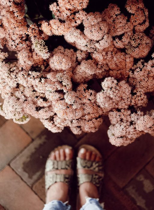 misha levin flowers and sandals
